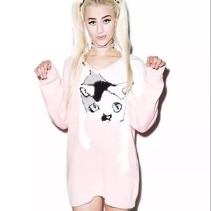 Wildfox Joan Baggy Boy Sweater in Pink Wood